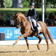 Hästfest i München